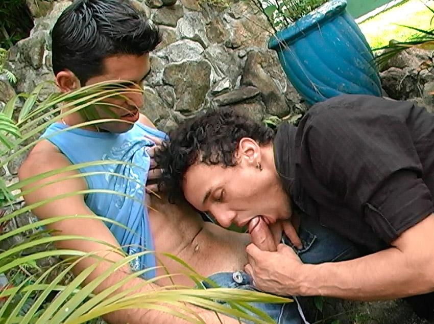 Flagra gay no parque